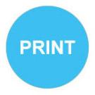 icon-print
