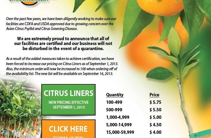 Citrus Tree Source