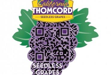 Farmers Fresh Fruit Thomcords Custom QR Code