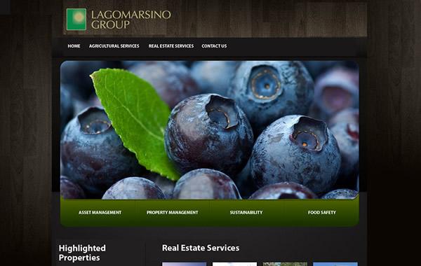 Lagomarsino Group