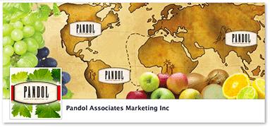 Pandol Marketing
