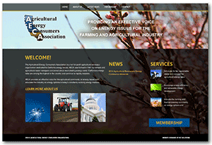 Ag Energy Consumers Association