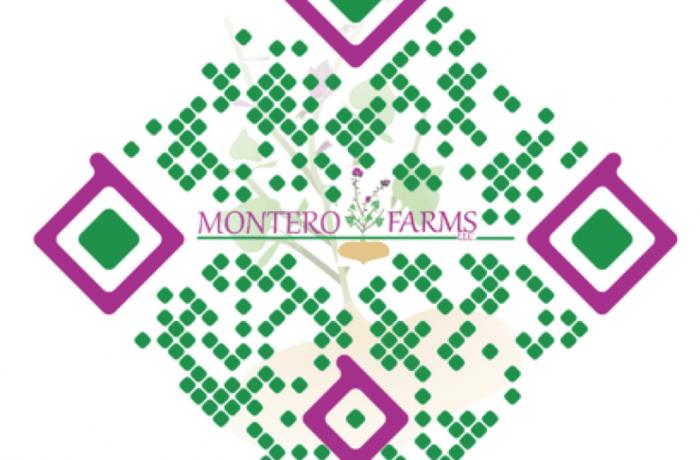 Montero Farms