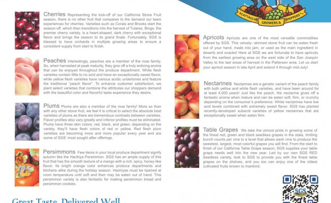fruit-sizing-chart-6inx9in-h-back