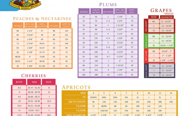 fruit-sizing-chart-6inx9in-h-front