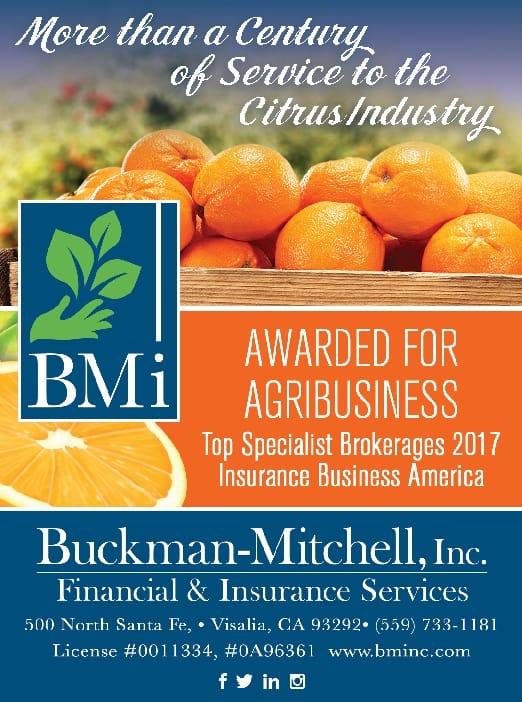 Buckman-Mitchell, Inc.