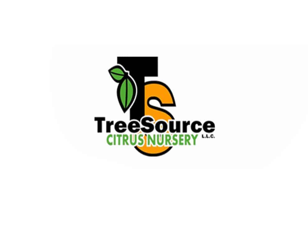 Citrus Tree Source