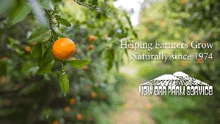 NEW ERA FARM SERVICE